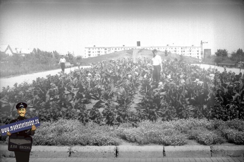Курган на месте кинотеатра «Аврора», Краснодар, 1961 год ©Фото с сайта myekaterinodar.ru