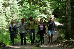 Волонтеры занялись обустройством маршрута «Тропа леопарда» в Кавказском заповеднике ©Фото из группы vk.com/kavzapoved