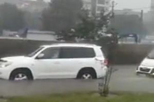 ©Скриншот видео из телеграм-канала «Типичный Краснодар», t.me/krd_tipich_ru