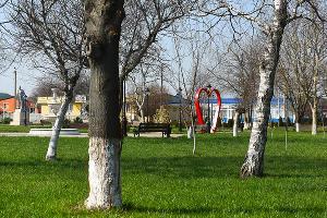 Парк Гречишкина в Тбилисском районе ©Фото Елены Синеок, Юга.ру