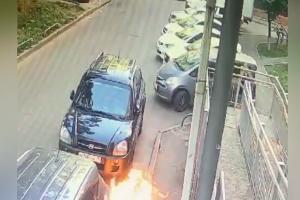 ©Скриншот видео из телеграм-канала t.me/tipichkras