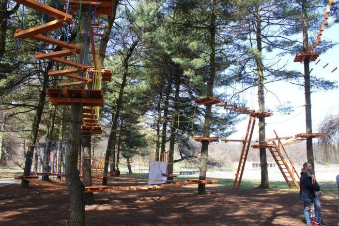 ВНальчике появится веревочный парк надеревьях