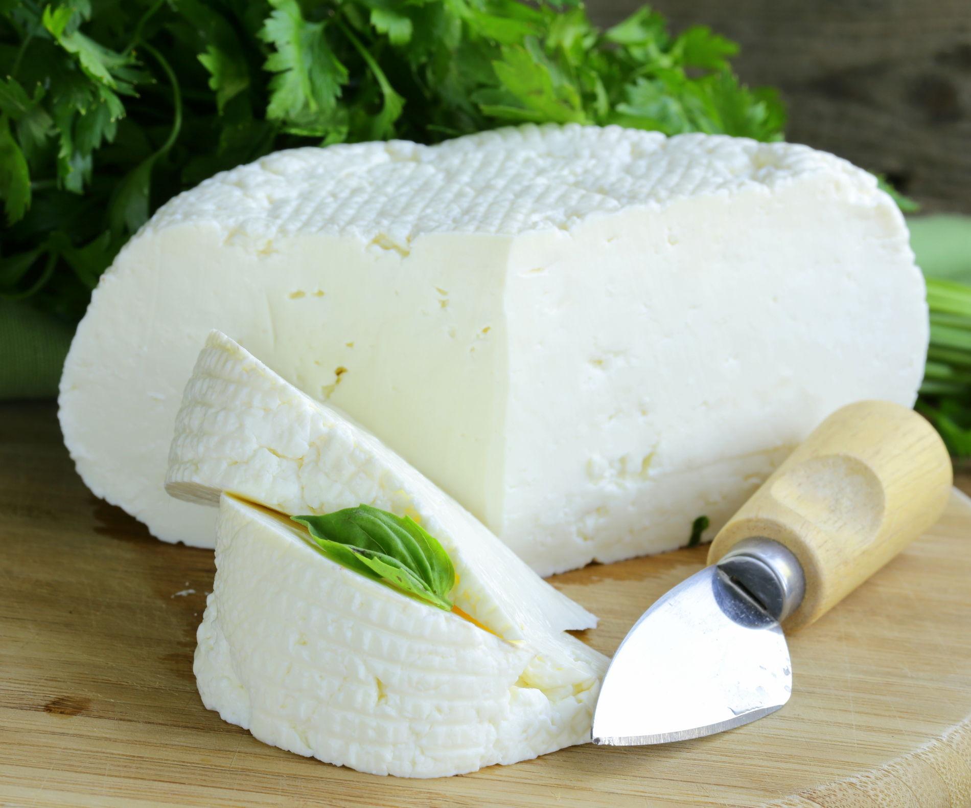 Союз поставщиков адыгейского сыра создали вреспублике