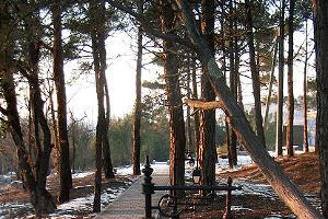 Т.н. дача Патриарха под Геленджиком. Фото: Экологическая вахта Северного Кавказа ©Фото Юга.ру