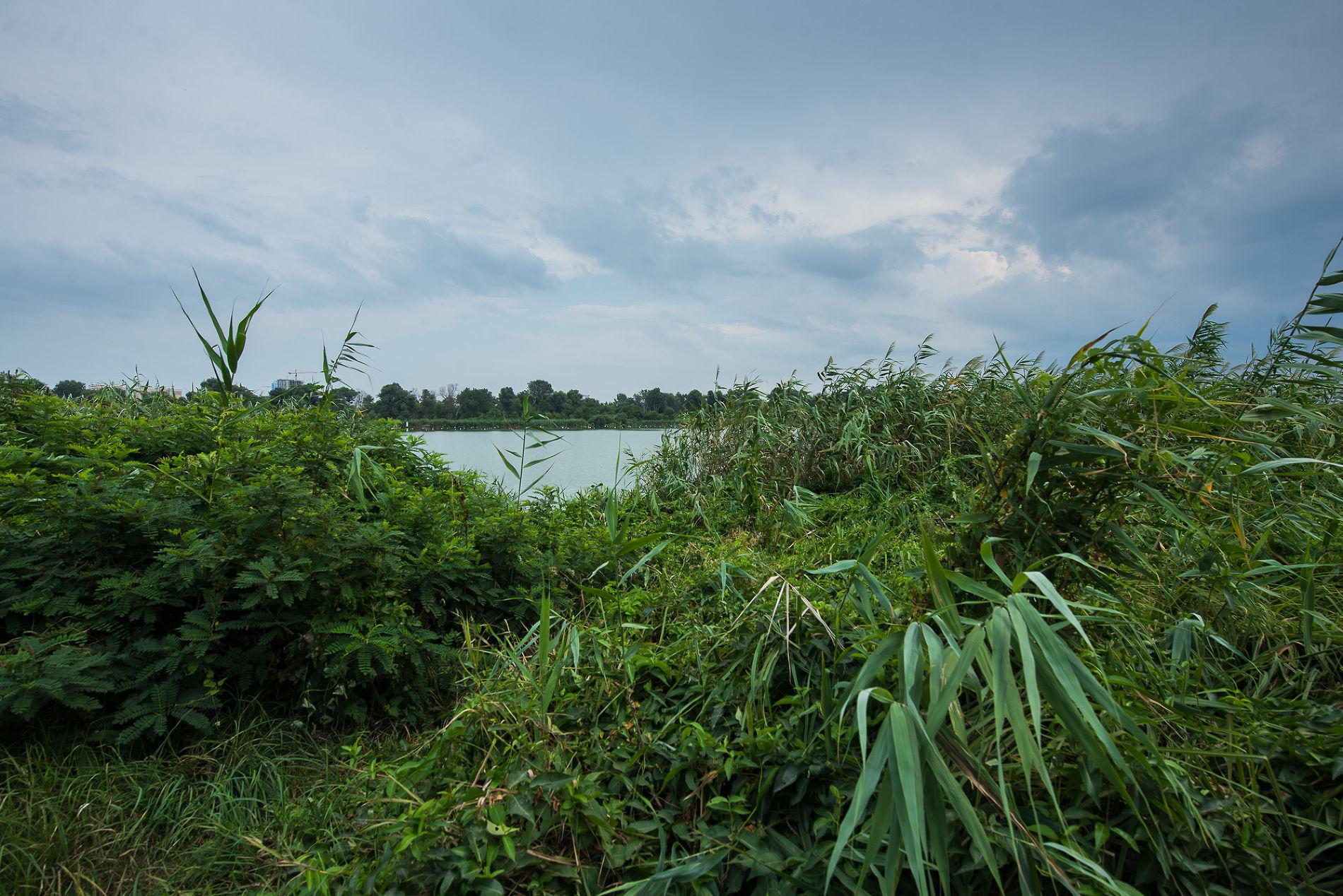 Большой остров ©Фото Елены Синеок, Юга.ру