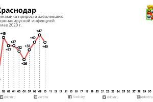 Данные по Краснодару ©Инфографика пресс-службы мэрии Краснодара