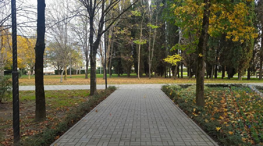 Место, предусмотренное под памятник ©Фото пресс-службы администрации Сочи