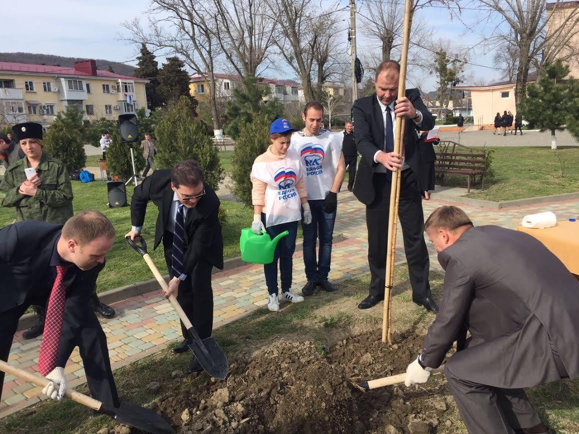 К80-летию Кубани втуапсинском селе высадили березовую аллею
