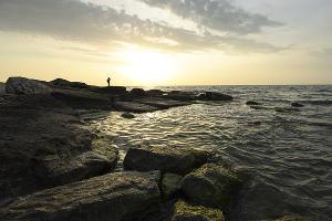 Берег Каспийского моря ©Фото Елены Синеок, Юга.ру