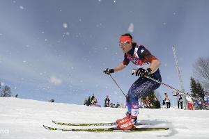 Максим Вылегжанин на дистанции масс-старта в соревнованиях по лыжным гонкам  ©РИА Новости