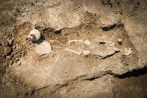 Рядом с могильным ящиком обнаружен скелет ребенка ©Фото Елены Синеок, Юга.ру