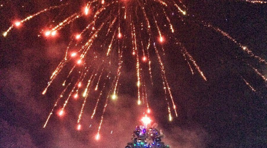 Первая новогодняя елка страны  ©Фото Юга.ру