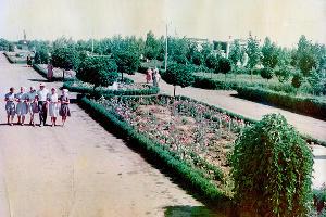 Парк совхоза «Кропоткинский» ©Изображение пресс-службы Тбилисского района