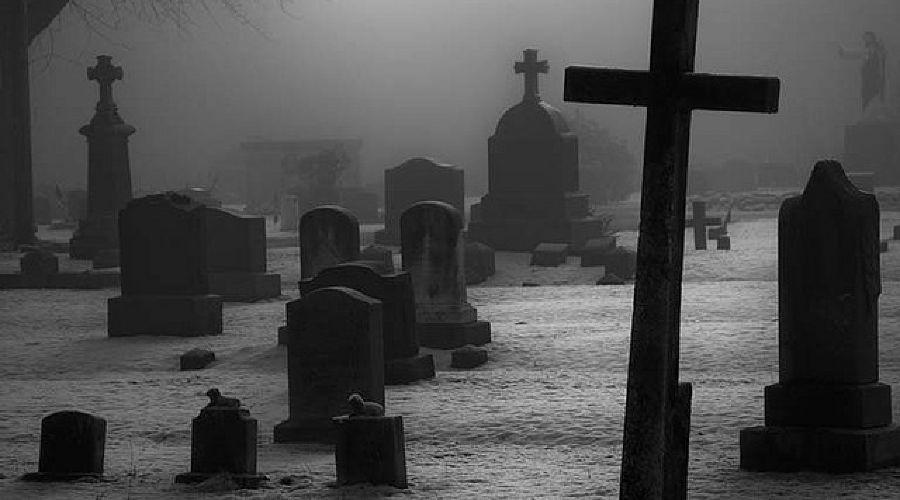 кладбище ©Фото Юга.ру