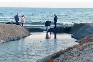 Волонтеры раскапывают проран Суджукской лагуны в Новороссийске ©Скриншот видео со страницы «Пляж Алексино» в инстаграме, instagram.com/aleksino_beach