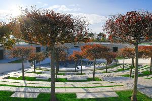 Амфитеатр парка «Краснодар»  ©Фото пресс-службы ФК «Краснодар»