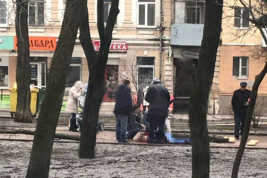 ВРостове-на-Дону упавшее дерево насмерть придавило 21-летнюю девушку