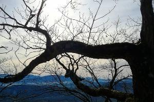 Сарай-гора ©Фото Александры Осиповой, instagram.com/myphotolifesasha