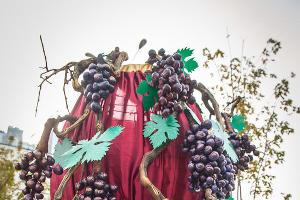 В Краснодаре прошел фестиваль молодого вина ©Алёна Живцова, ЮГА.ру