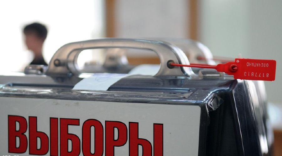 Выборы в Краснодаре ©Елена Синеок. ЮГА.ру