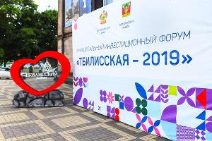 Тбилисский инвестиционный форум — 2019 ©Фото Елены Синеок, Юга.ру