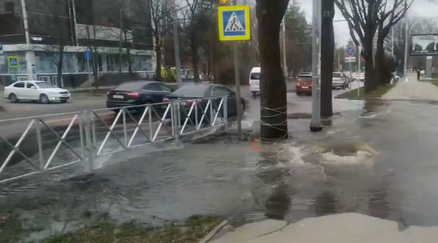 ©Скриншот видео из канала «Типичный Краснодар», tmtr.me/krd_tipich_ru