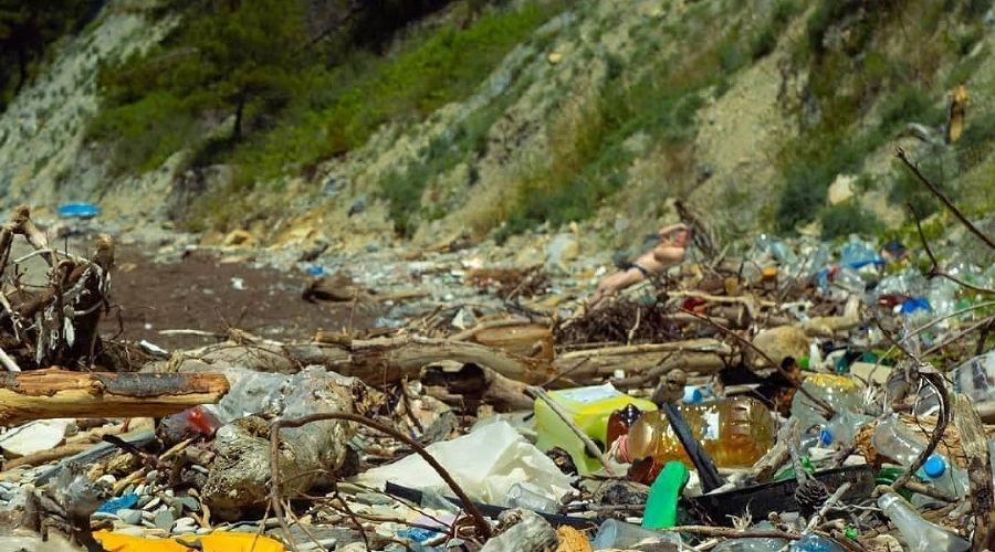 ©Фото из инстаграма организации «Чистая среда Краснодар», instagram.com/chistaya.sreda/