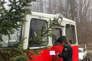 ©Фото пресс-службы УФССП России по Краснодарскому краю