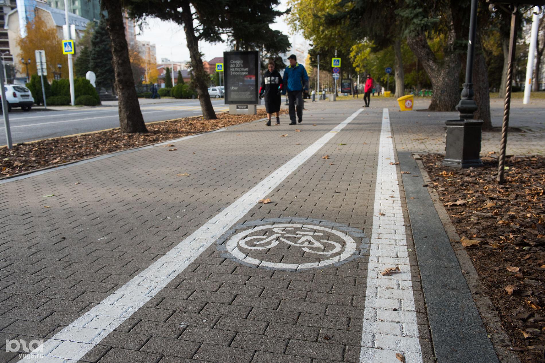 Велодорожка. Краснодар, 2020 год ©Фото Елены Синеок, Юга.ру