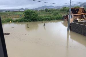 Наводнение в Сочи 25 июня 2015 года. Имеретинка, ул. Листопадная ©http://www.blogsochi.ru