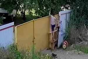 ©Кадр из видео группы «Интересный Краснодар» в соцсети «ВКонтакте», vk.com/krd24