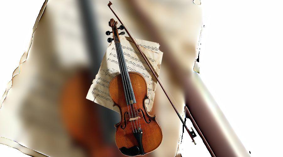 скрипка ©Фото Юга.ру