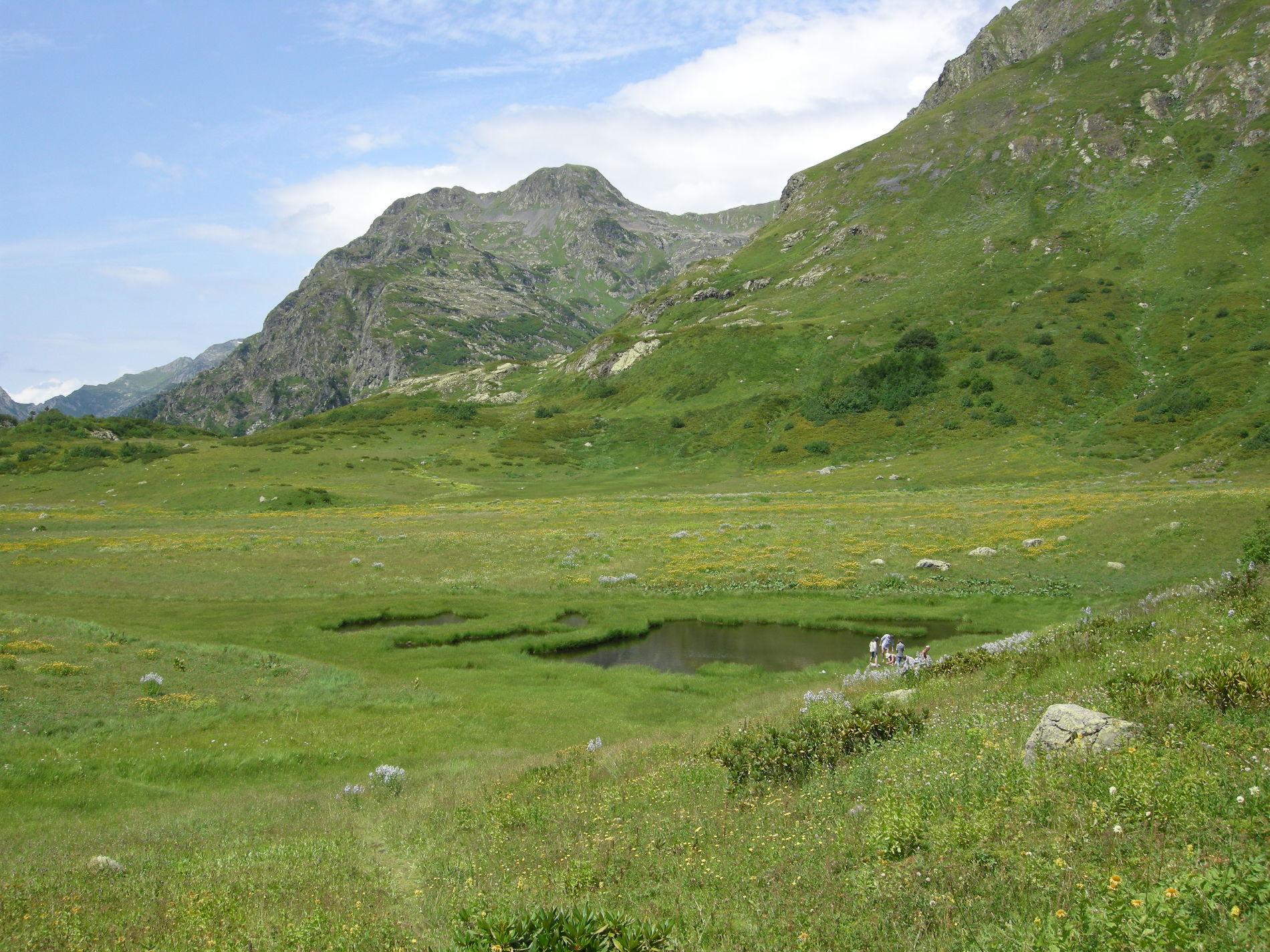 Озера Дзитаку ©Фото пресс-службы Кавказского биосферного заповедника