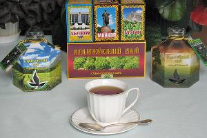 Адыгейский чай ©Фото с сайта www.vniisubtrop.ru