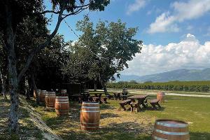 ©Фото пресс-службы винодельни «Шато де Талю», instagram.com/chateau_de_talu