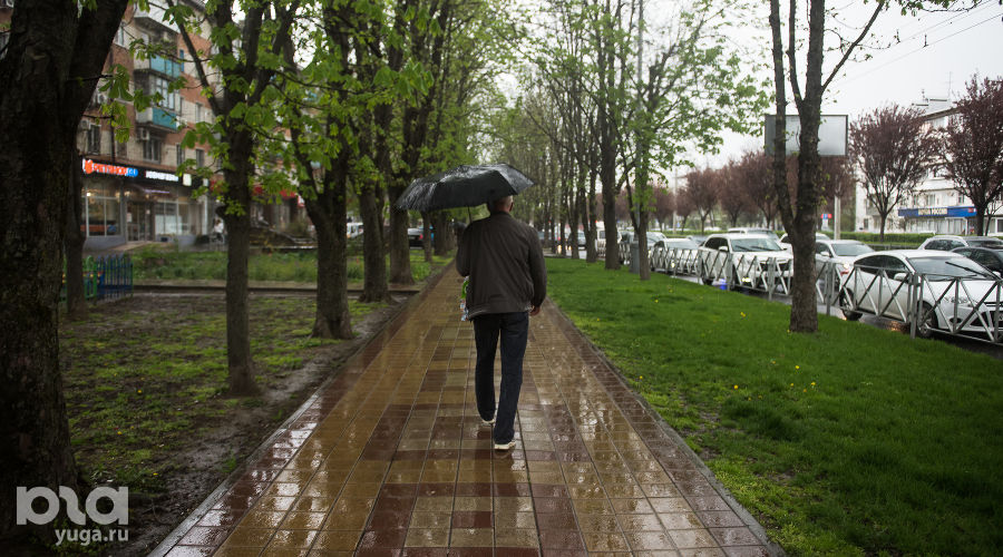 Неделя на Кубани начнется с дождей