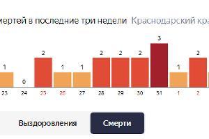 Случаи смертей на Кубани ©Графика с сайта yandex.ru/covid19