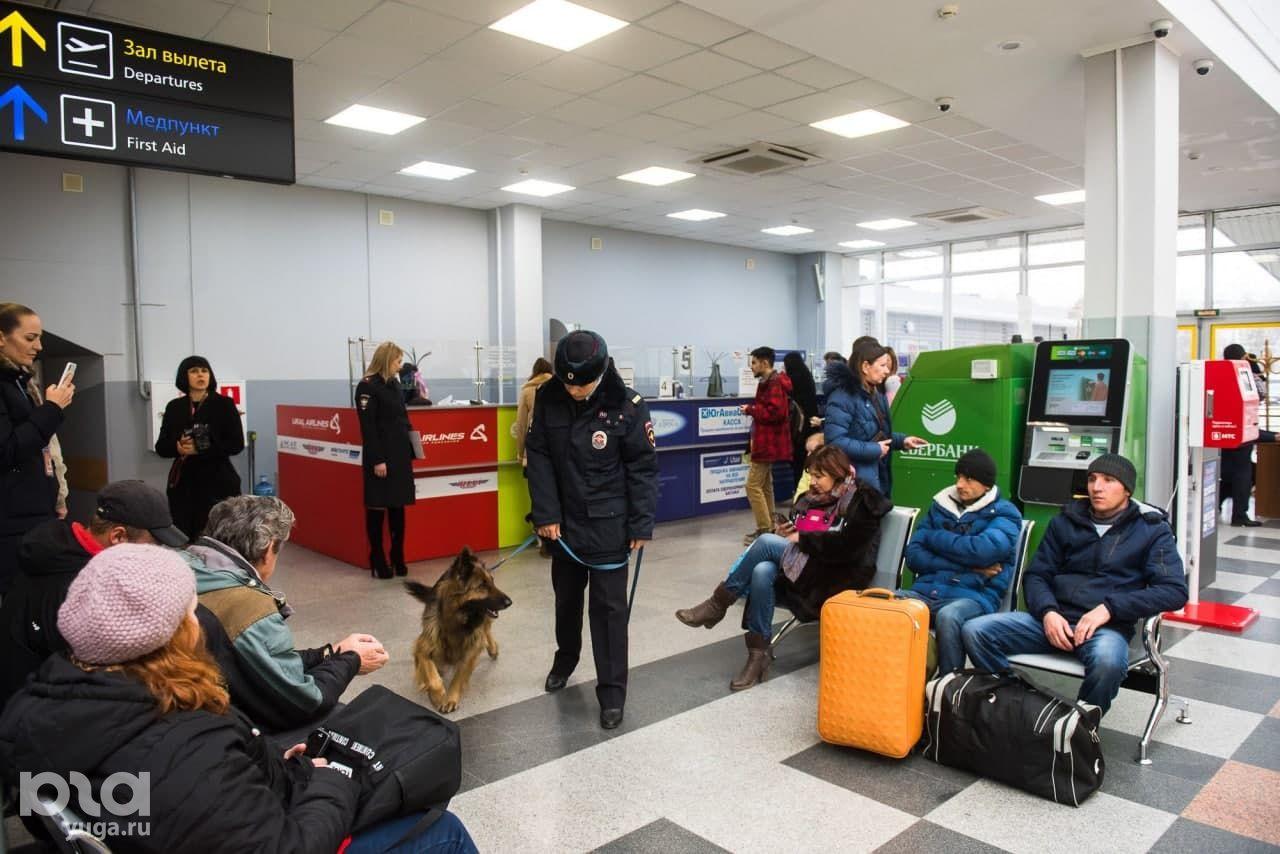 Международный аэропорт Краснодар, 2019 год ©Фото Елены Синеок, Юга.ру
