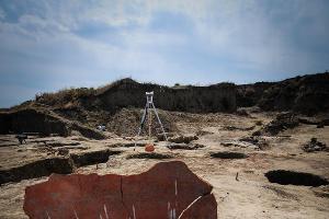 Фрагмент огромного сосуда, обнаруженный при раскопках в Фанагории ©Елена Синеок, ЮГА.ру
