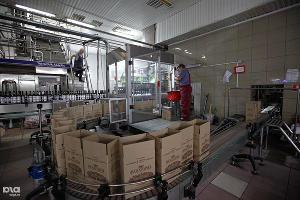 """На Кубани начали производить сотерн из винограда с """"благородной плесенью"""" ©Влад Александров, ЮГА.ру"""