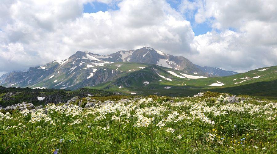 ©Фото с сайта westerncaucasus.ru