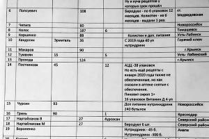 Таблица по необеспеченности детей с муковисцидозом лекарствами ©Фото Екатерины Синебрюковой