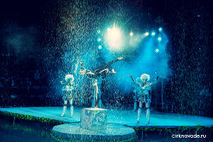 ©Фото с сайта cirkaquashow.ru