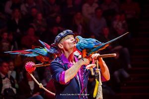 ©Фото Ekaterina Kraeva с сайта Краснодарского государственного цирка, krasnodar-circus.ru