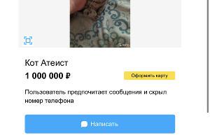©Скриншот объявления с Avito, avito.ru/krasnodar/koshki/kot_ateist_2222878520
