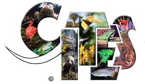 СИТЕС — документ, регламентирующий международную торговлю дикими животными, которые оказались на грани уничтожения. Россия также подписала эту конвенцию