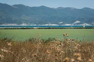 Вид на Суджукскую лагуну ©Фото Елены Синеок, Юга.ру