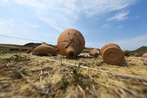 Раскопки в Фанагории. Уцелевшая гробница позднеантичной эпохи ©Фото Елены Синеок, Юга.ру
