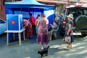 Выборы главы Краснодарского края и депутатов городской думы Краснодара ©Фото Романа Ибрагимова
