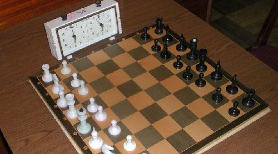 шахматы ©Фото Юга.ру